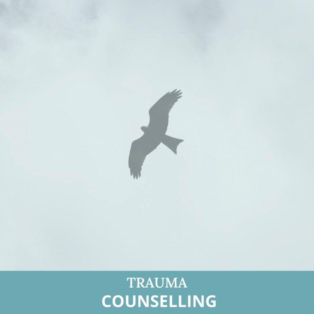 trauma counselling service pic