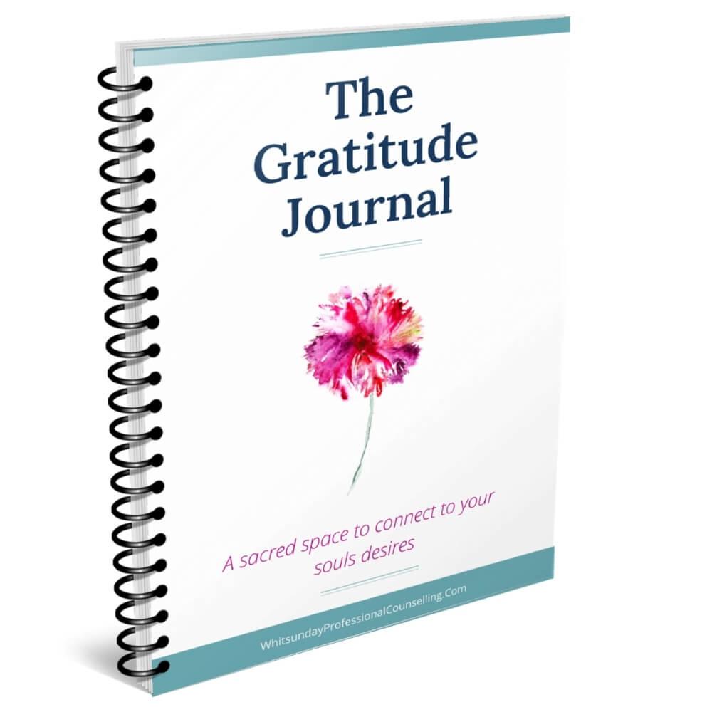 the gratitude journal cover