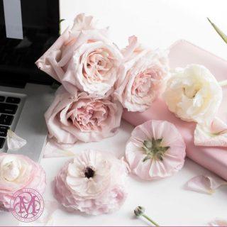 #writer #author #lovewriting #business #entrepreneur #writingforthesoul #mirelladeboni